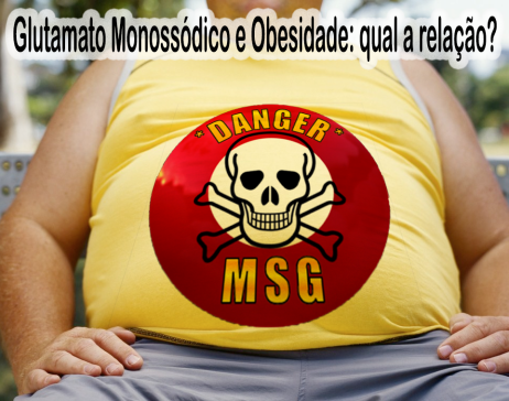 glutamato-monossódico-obesidade