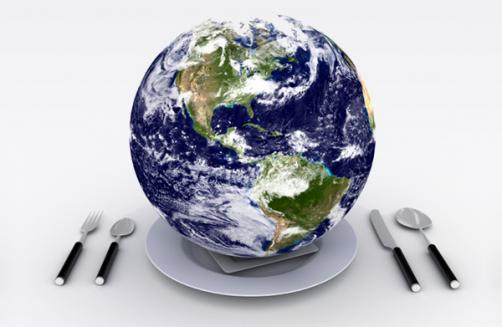 prato sustentável