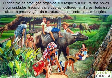 produção_orgânica