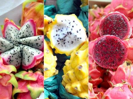 variedades pitaya